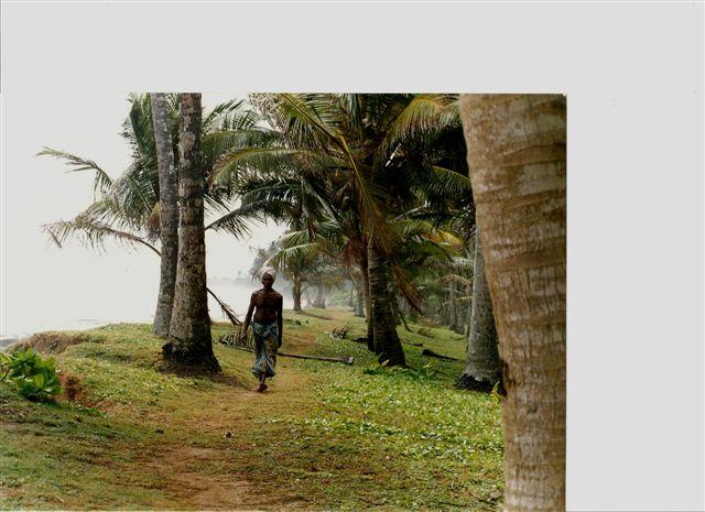 Sri-Lanka Kosgoda