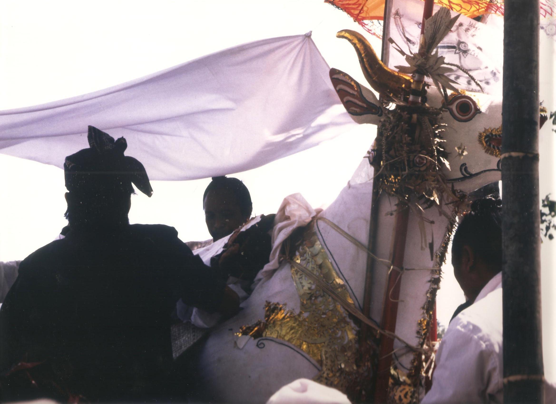 IntroduInt el cadàver per la cremació. Java(II)