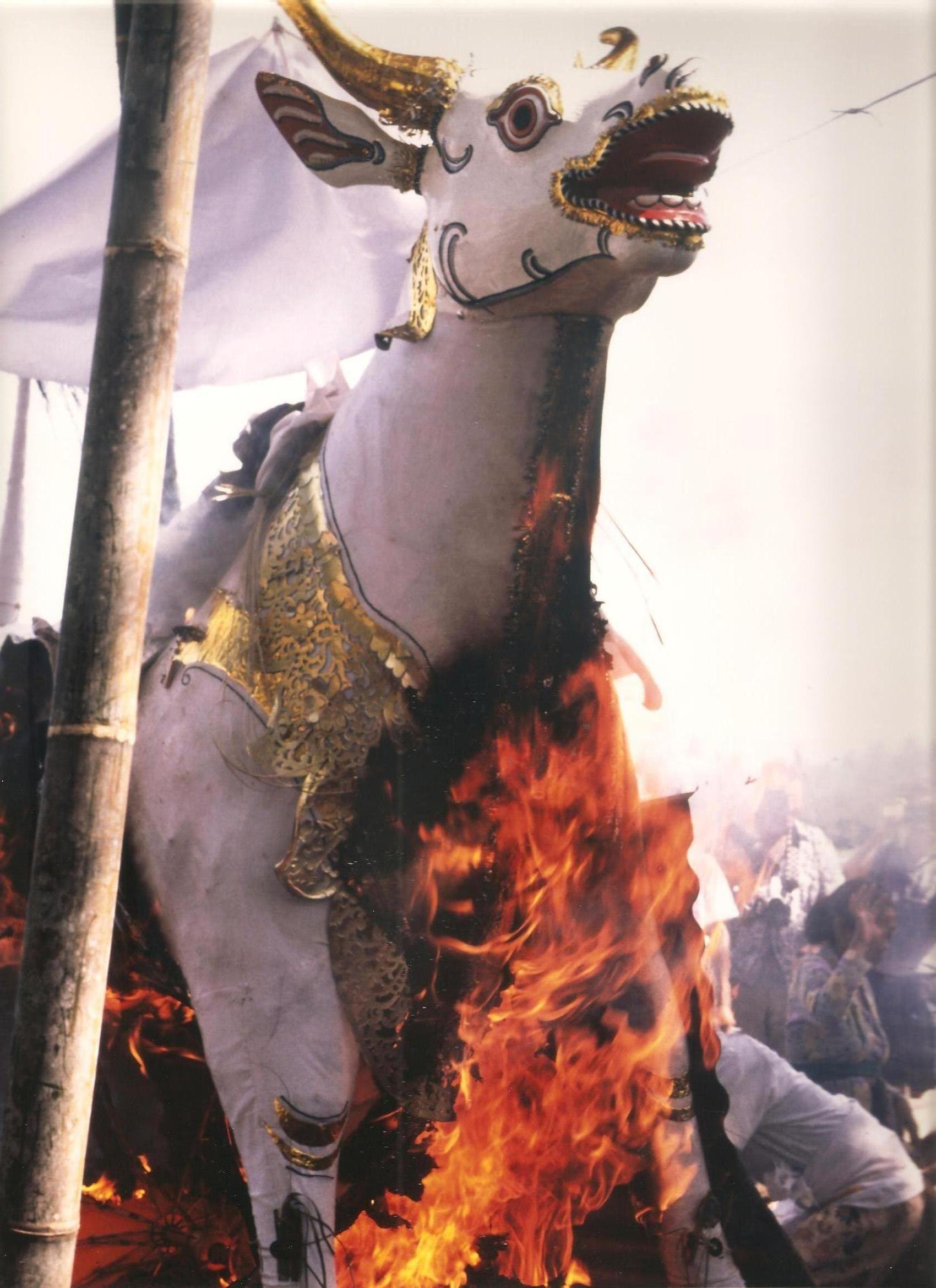 La cremació. Java (III)